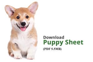 Download Puppy Sheet
